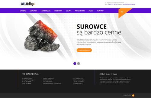 strona-www-firmowa-haldex-1