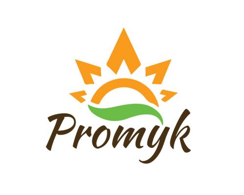 promyk-projekt-logo-min