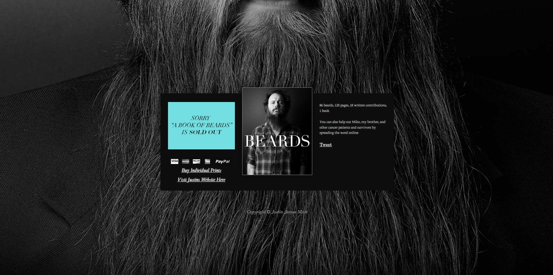 projektowanie-stron-www-inspiracje-bookofbeards-2