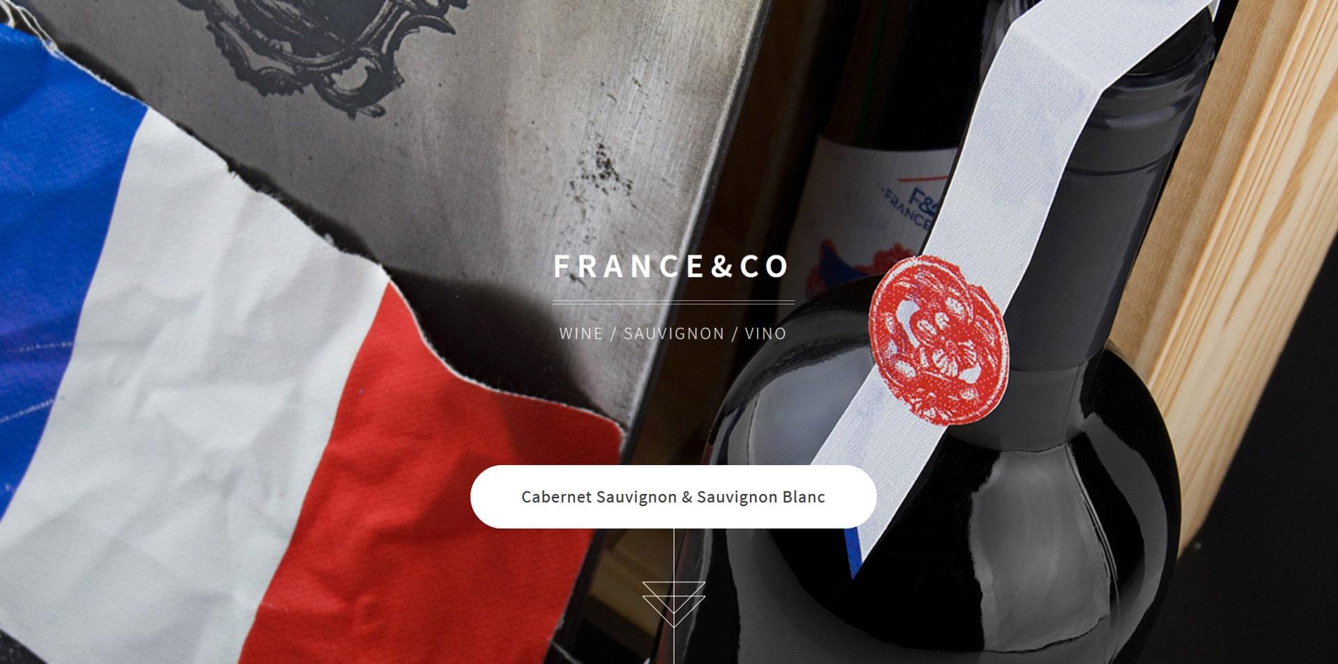 projektowanie-stron-www-inspiracje-franceandcowine